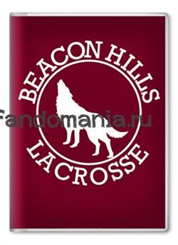 "Обложка на паспорт ""Beacon Hills"" (Волчонок) - фото 7027"